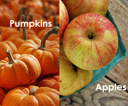 Pumpkin-Apples